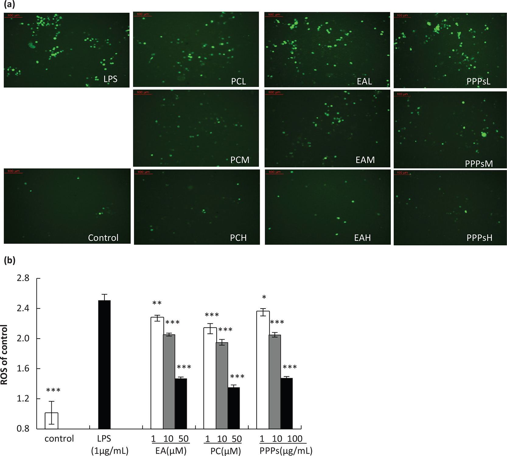 Pomegranate peel polyphenols inhibits inflammation in LPS-induced